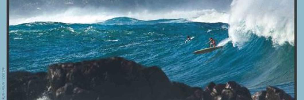 Le Surfer's Journal 113 en kiosques